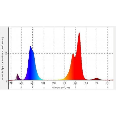 Измерение спектра источников света видимого диапазона 380нм - 840нм